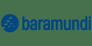 macmon_web_whitepaper_baramundi
